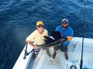 sailfish jim 1.jpg